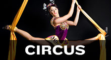 Circus Music Collection